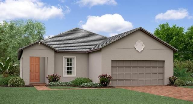 31826 Cabana Rye Avenue, San Antonio, FL 33576 (MLS #T3225776) :: Bustamante Real Estate