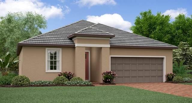 31818 Cabana Rye Avenue, San Antonio, FL 33576 (MLS #T3225781) :: Bustamante Real Estate