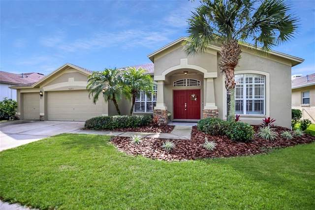 16211 Bridgepark Drive, Lithia, FL 33547 (MLS #T3225820) :: Premier Home Experts