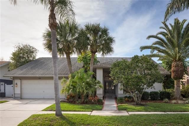 8722 Chadwick Drive, Tampa, FL 33635 (MLS #T3225830) :: The Duncan Duo Team