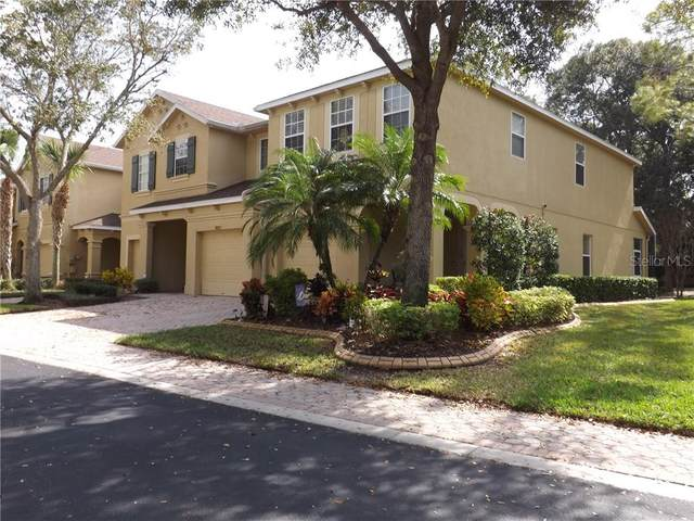 10535 Shady Falls Court, Riverview, FL 33578 (MLS #T3225849) :: The Duncan Duo Team