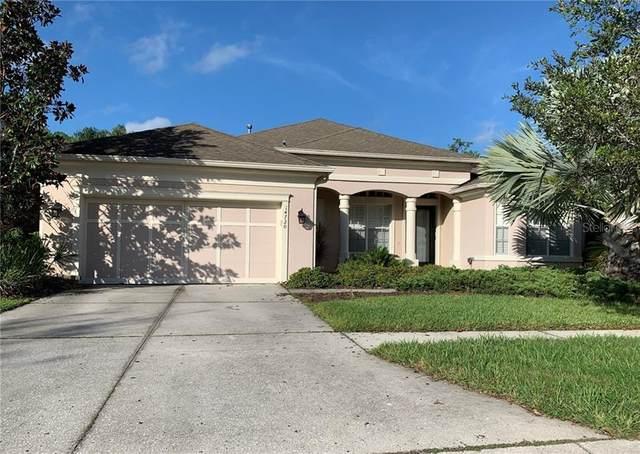 14720 Tudor Chase Drive, Tampa, FL 33626 (MLS #T3225878) :: 54 Realty