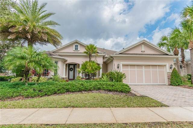 12017 Meridian Point Drive, Tampa, FL 33626 (MLS #T3225911) :: GO Realty