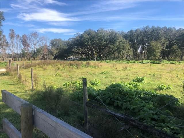 5012 Buddy Rogers Way, Plant City, FL 33565 (MLS #T3225973) :: Dalton Wade Real Estate Group