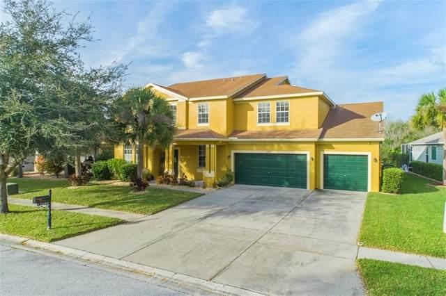 11050 Stone Branch Drive, Riverview, FL 33569 (MLS #T3225997) :: Lovitch Group, LLC