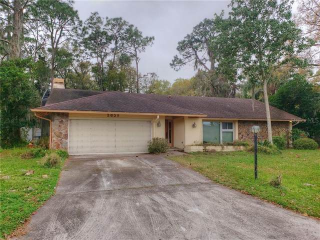 2839 Hammock Drive, Plant City, FL 33566 (MLS #T3226007) :: Dalton Wade Real Estate Group