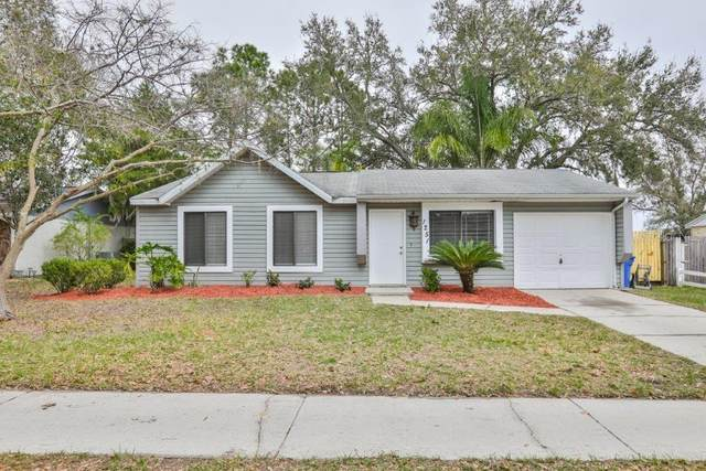 1251 Piney Branch Circle, Valrico, FL 33594 (MLS #T3226023) :: Griffin Group