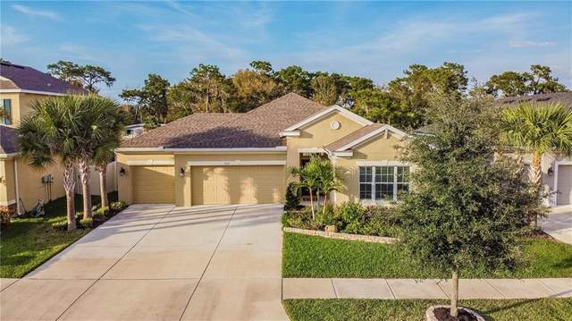 17512 Bright Wheat Drive, Lithia, FL 33547 (MLS #T3226077) :: Premier Home Experts