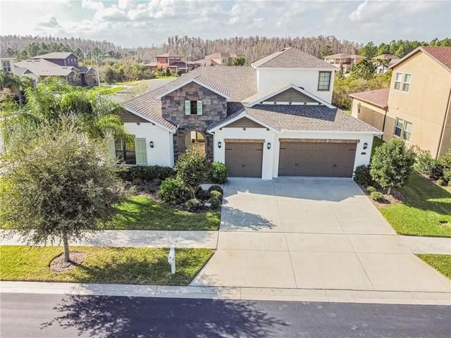 2571 Gwynhurst Boulevard, Wesley Chapel, FL 33543 (MLS #T3226099) :: Griffin Group