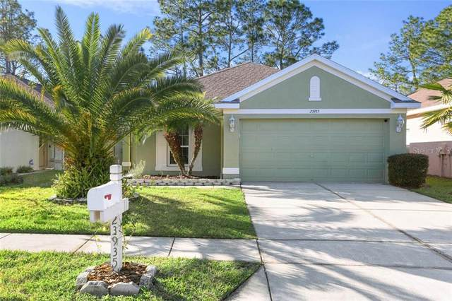 23935 Coral Ridge Lane, Land O Lakes, FL 34639 (MLS #T3226132) :: 54 Realty