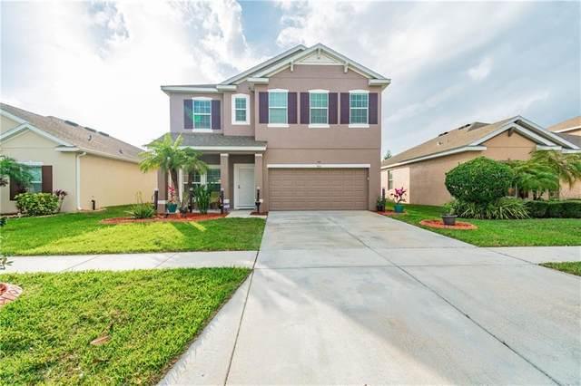 904 Fern Leaf Drive, Ruskin, FL 33570 (MLS #T3226135) :: Dalton Wade Real Estate Group