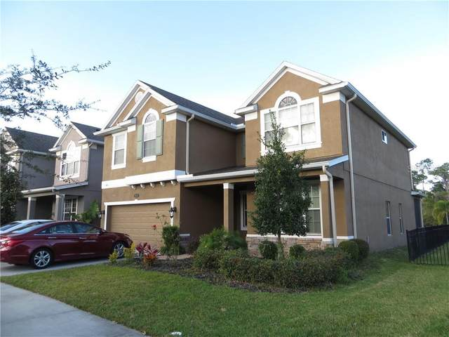 19313 Water Maple Drive, Tampa, FL 33647 (MLS #T3226167) :: Bustamante Real Estate