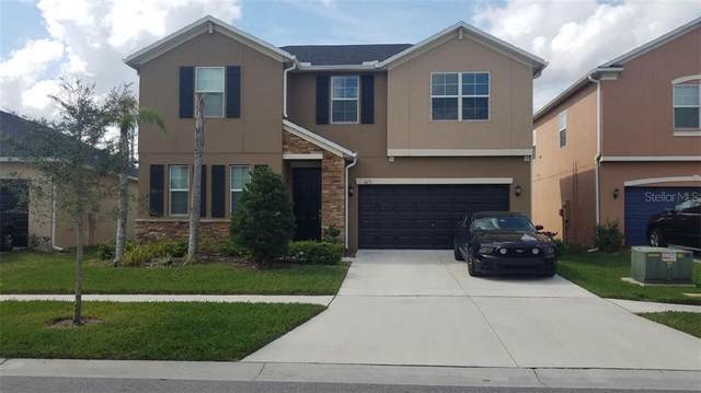 4173 Mount Bandon Drive, Land O Lakes, FL 34638 (MLS #T3226199) :: 54 Realty