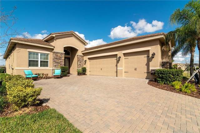 30711 Chesapeake Bay Drive, Wesley Chapel, FL 33543 (MLS #T3226221) :: Gate Arty & the Group - Keller Williams Realty Smart