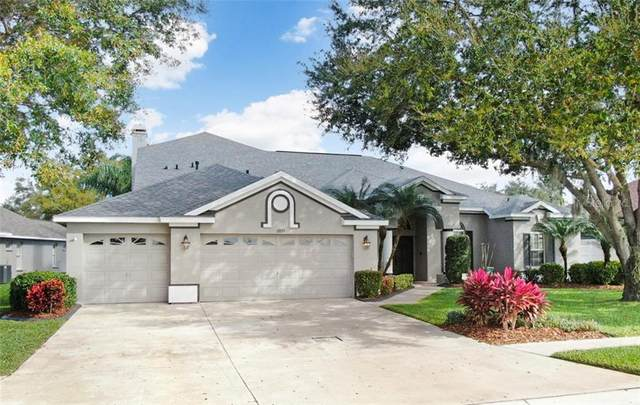 2833 Lake Michaela Boulevard, Valrico, FL 33596 (MLS #T3226242) :: Griffin Group