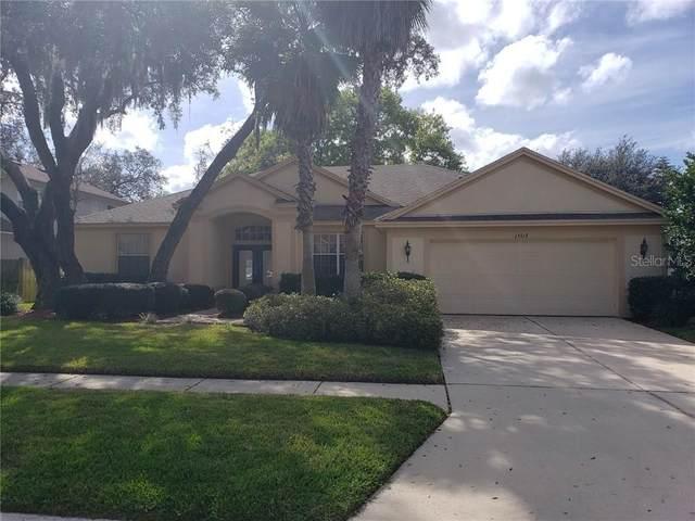 15513 Carrillon Estates Boulevard, Tampa, FL 33625 (MLS #T3226244) :: The Duncan Duo Team