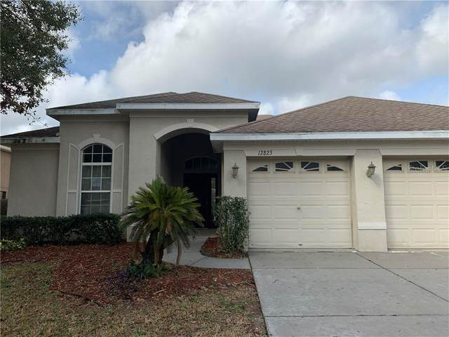 12823 Flamingo Parkway, Spring Hill, FL 34610 (MLS #T3226254) :: Dalton Wade Real Estate Group