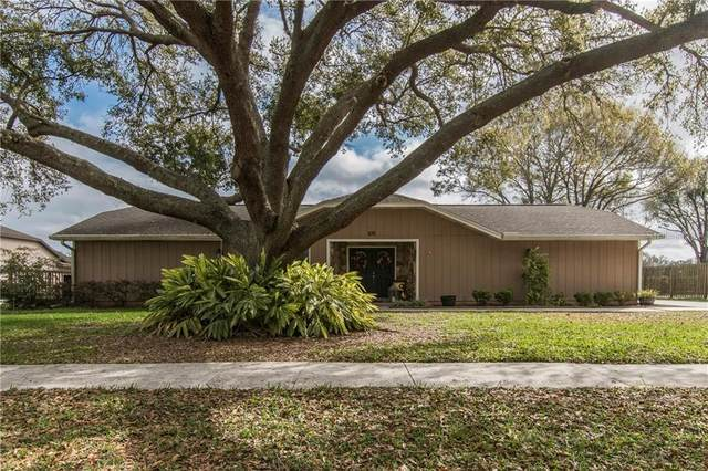 232 Wood Hall Drive, Mulberry, FL 33860 (MLS #T3226296) :: EXIT King Realty