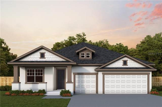 16702 Vibrato Lane, Land O Lakes, FL 34638 (MLS #T3226308) :: 54 Realty