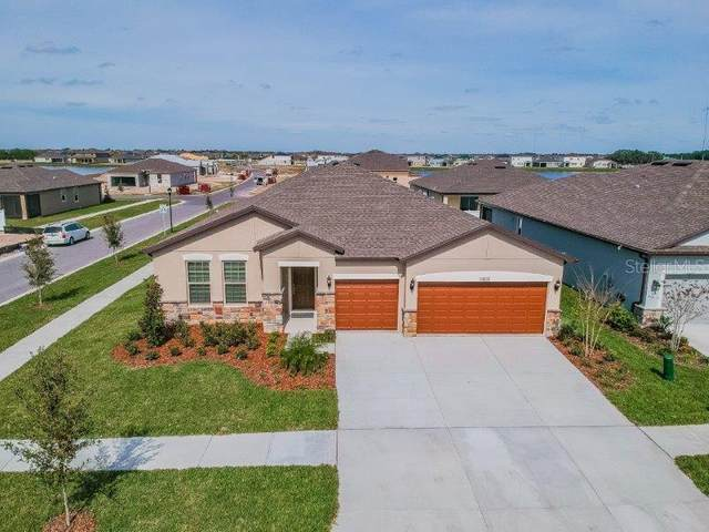 11802 Brighton Knoll Loop, Riverview, FL 33579 (MLS #T3226316) :: Griffin Group