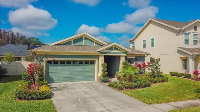 1731 Tallulah Terrace, Wesley Chapel, FL 33543 (MLS #T3226317) :: Griffin Group