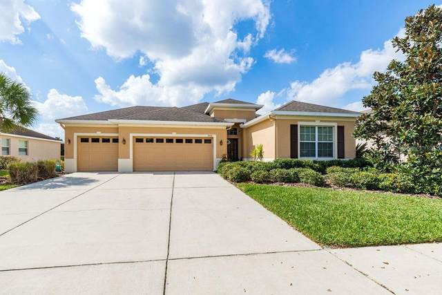 11015 Wembley Landing Dr, Lithia, FL 33547 (MLS #T3226327) :: Mark and Joni Coulter | Better Homes and Gardens