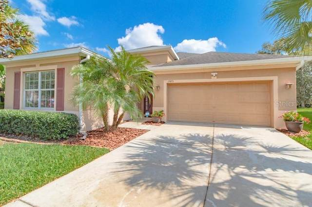 17475 New Cross Circle, Lithia, FL 33547 (MLS #T3226329) :: Mark and Joni Coulter | Better Homes and Gardens