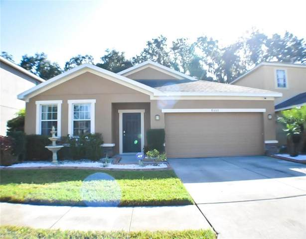 8602 Tidal Breeze Drive, Riverview, FL 33569 (MLS #T3226349) :: Mark and Joni Coulter   Better Homes and Gardens