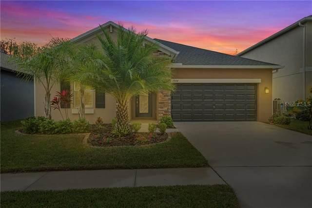 19154 Alexandrea Lee Court, Land O Lakes, FL 34638 (MLS #T3226361) :: 54 Realty