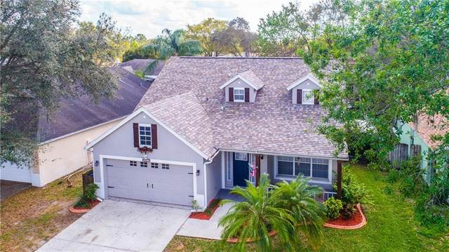 10923 Peppersong Drive, Riverview, FL 33578 (MLS #T3226409) :: The Duncan Duo Team