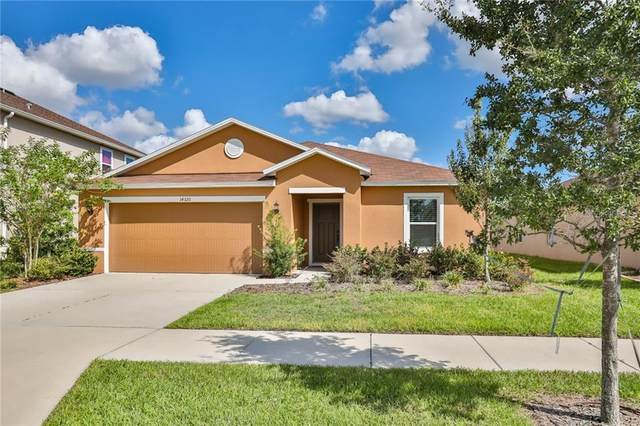 14320 Romeo Boulevard, Wimauma, FL 33598 (MLS #T3226422) :: The Duncan Duo Team