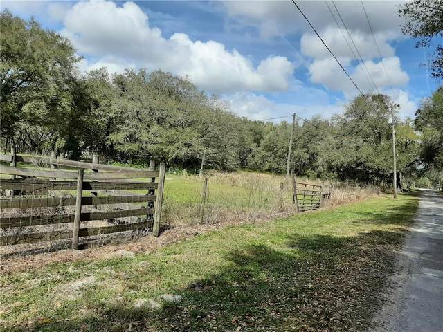 12015 Emmaus Cemetery Road, San Antonio, FL 33576 (MLS #T3226439) :: Mark and Joni Coulter | Better Homes and Gardens