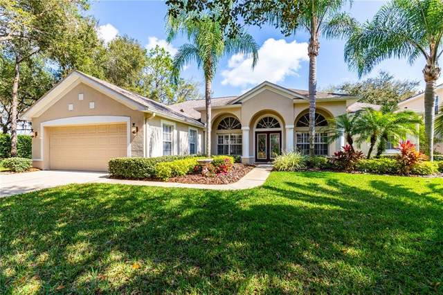 3502 Cordgrass Drive, Valrico, FL 33596 (MLS #T3226448) :: Mark and Joni Coulter | Better Homes and Gardens