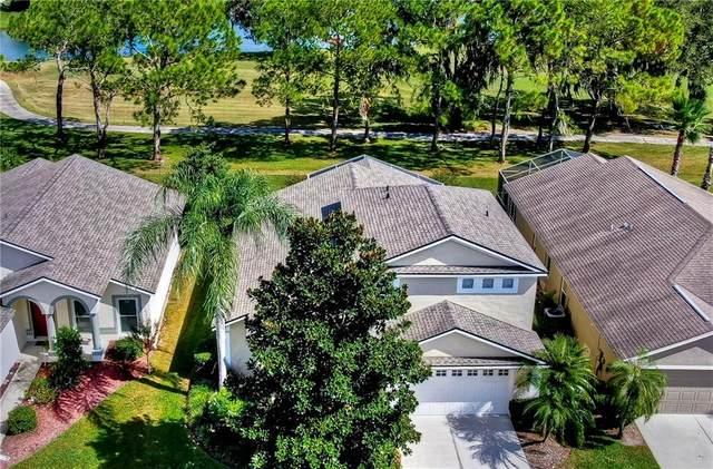 3336 Stonebridge Trail, Valrico, FL 33596 (MLS #T3226457) :: Cartwright Realty