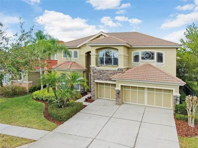 14786 San Marsala Court, Tampa, FL 33626 (MLS #T3226468) :: Griffin Group