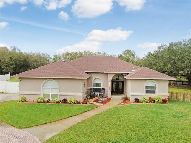 11305 Hoot Owl Court, Riverview, FL 33569 (MLS #T3226472) :: The Duncan Duo Team