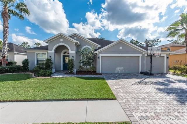 11708 Newberry Grove Loop, Riverview, FL 33579 (MLS #T3226497) :: The Duncan Duo Team