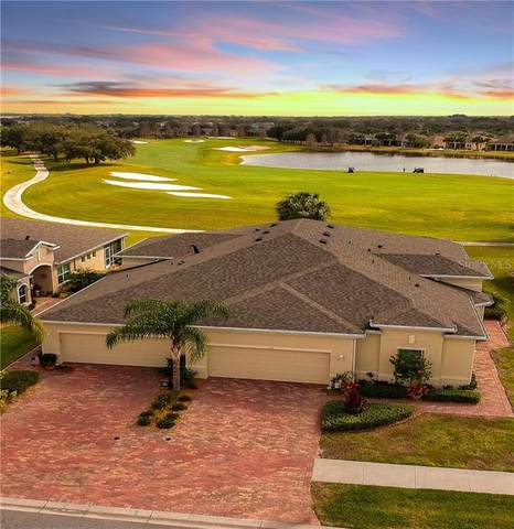 718 Chipper Drive, Sun City Center, FL 33573 (MLS #T3226527) :: Rabell Realty Group