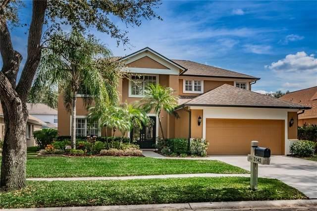 3142 Bent Creek Drive, Valrico, FL 33596 (MLS #T3226587) :: Cartwright Realty