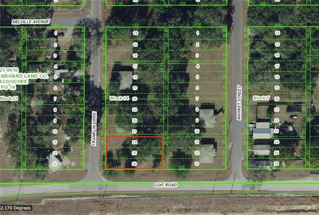 21006 Franklin Drive, Dade City, FL 33523 (MLS #T3226620) :: Godwin Realty Group