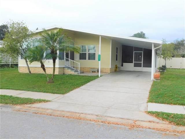 5551 Antigua Drive, Zephyrhills, FL 33541 (MLS #T3226644) :: Team Pepka