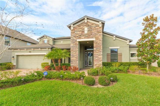 19425 Whispering Brook Drive, Tampa, FL 33647 (MLS #T3226678) :: 54 Realty