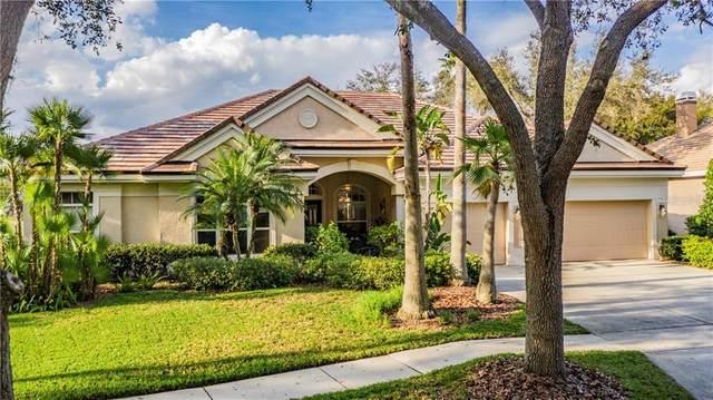 9332 Deer Creek Drive, Tampa, FL 33647 (MLS #T3226735) :: 54 Realty
