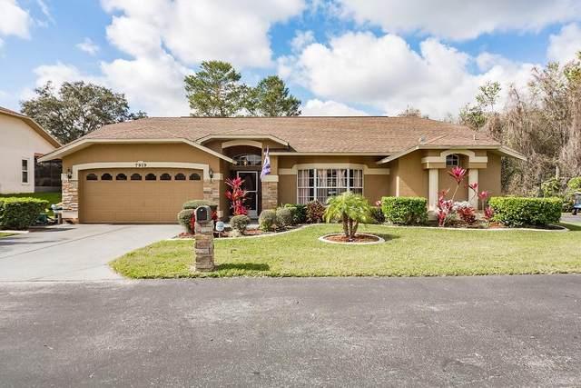 7919 Landsdowne Lane, New Port Richey, FL 34654 (MLS #T3226737) :: Armel Real Estate