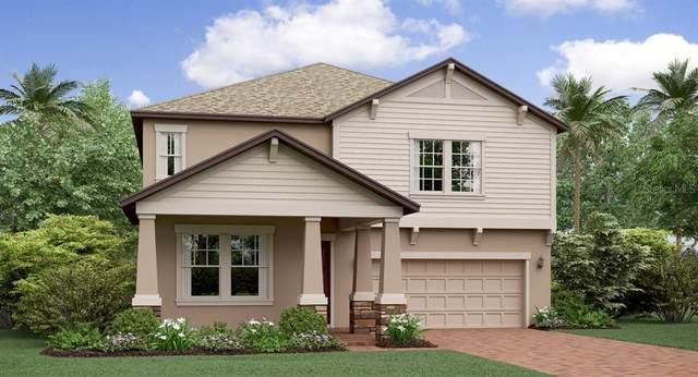 8704 Capstone Ranch Drive, New Port Richey, FL 34655 (MLS #T3226745) :: Team Pepka