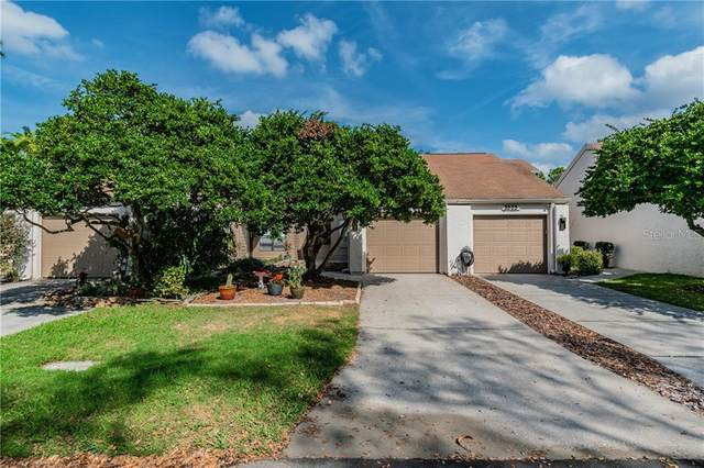 3805 Esplanade Court, Tampa, FL 33618 (MLS #T3226758) :: The Duncan Duo Team