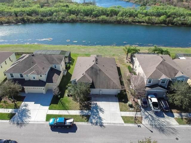 18442 New London Avenue, Land O Lakes, FL 34638 (MLS #T3226763) :: Team Pepka