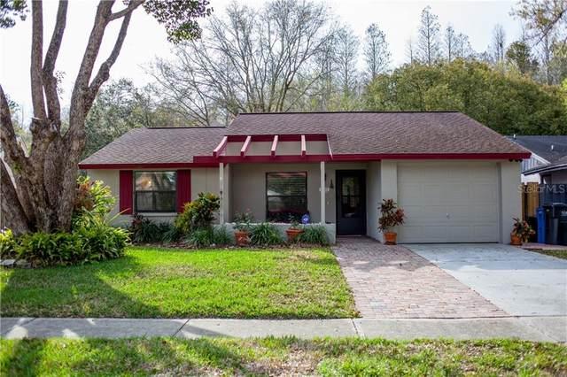 16122 Manorwood Circle, Tampa, FL 33624 (MLS #T3226769) :: Griffin Group