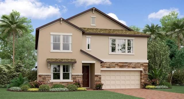 8718 Capstone Ranch Drive, New Port Richey, FL 34655 (MLS #T3226778) :: Armel Real Estate