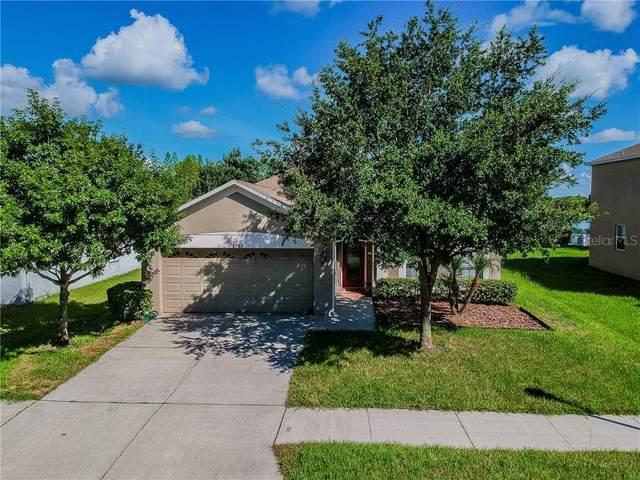 9702 Maxson Drive, Land O Lakes, FL 34638 (MLS #T3226779) :: Baird Realty Group